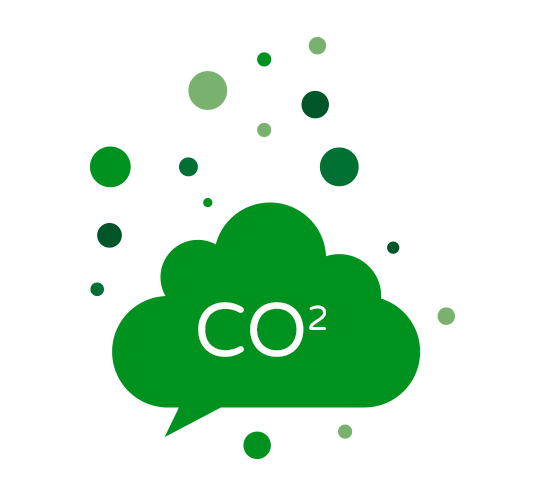 Carbon Management Reporting